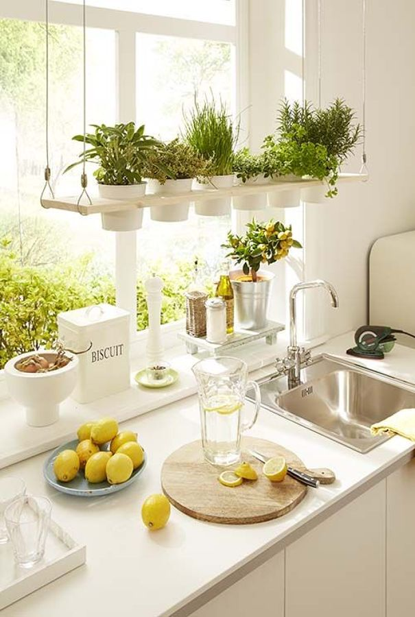 cocina-con-plantas-aromaticas-1322577